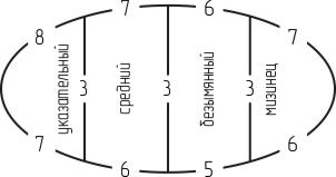 Схема распределения петель при вязании перчатки